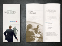 Bank of America Affluent-Money Management Brochure