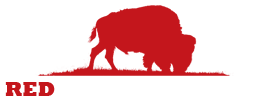 Red Buffalo Design Logo