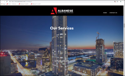 Albanese Consulting website